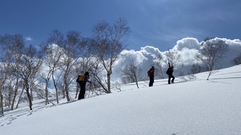 best ski skins